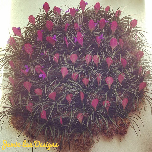Jamie Lau Designs NYBG 5